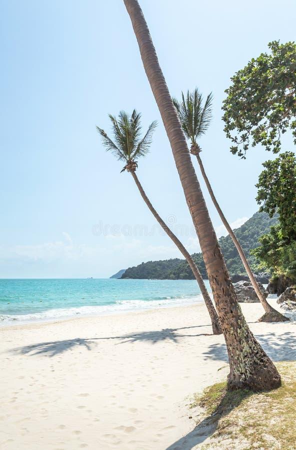 La vue de paysage aux ventres de Wua enroulent la plage d'île avec des palmiers de noix de coco dans les îles d'Angthong Marine P image libre de droits