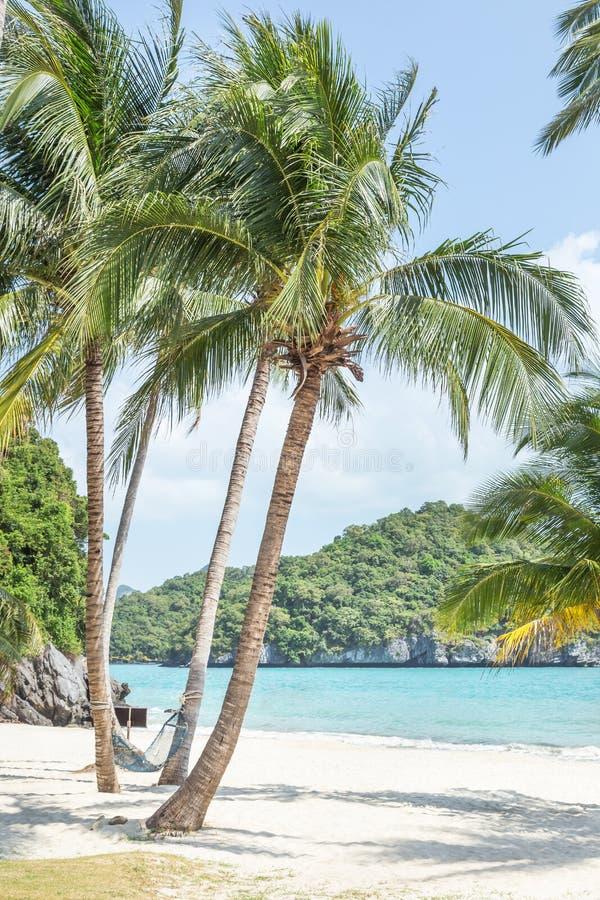 La vue de paysage aux ventres de Wua enroulent la plage et l'hamac d'île pour la relaxation avec le sommeil à détendre sous des p images stock