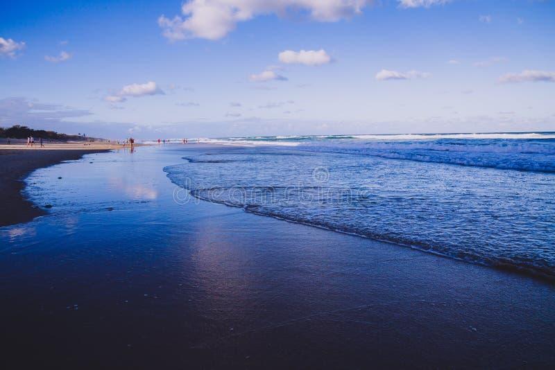 La vue de la plage principale en Gold Coast, le secteur comporte le sable d'or photos libres de droits