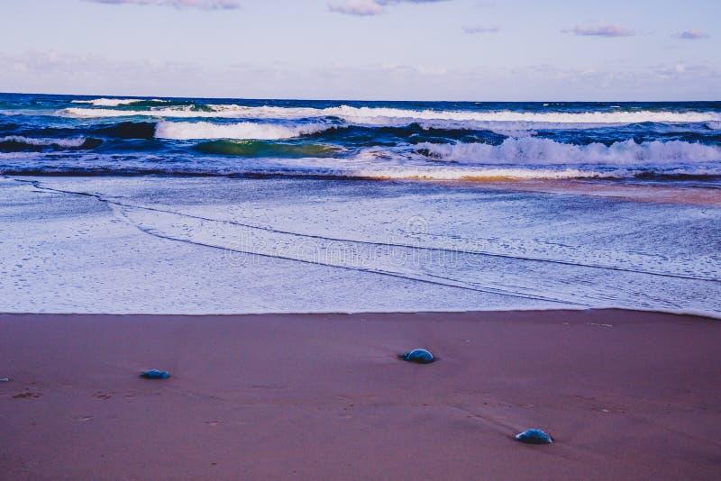 La vue de la plage principale en Gold Coast, le secteur comporte le sable d'or images stock