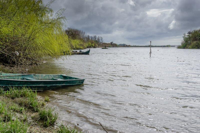 La vue de la rivière avec l'herbe et le bateau, à Porto font le sabugueiro, muge, santarem Portugal photo libre de droits