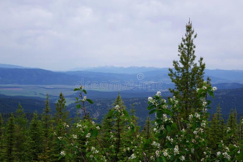 La vue des collines s'approchent du grenat, Montana photos stock