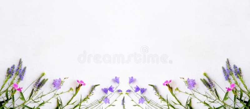 La vue des fleurs sauvages, cloche, oeillet, la lavande, bavures, sur une toile blanche a isolé le fond, un cadre des usines image libre de droits