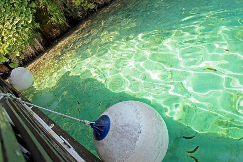 La vue du bateau de l'eau claire avec des poissons dans des lacs Plitvice photo stock