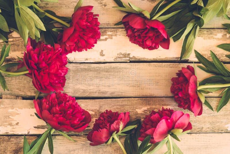La vue a fait des fleurs rouges fraîches de pivoine sur le fond en bois âgé images libres de droits