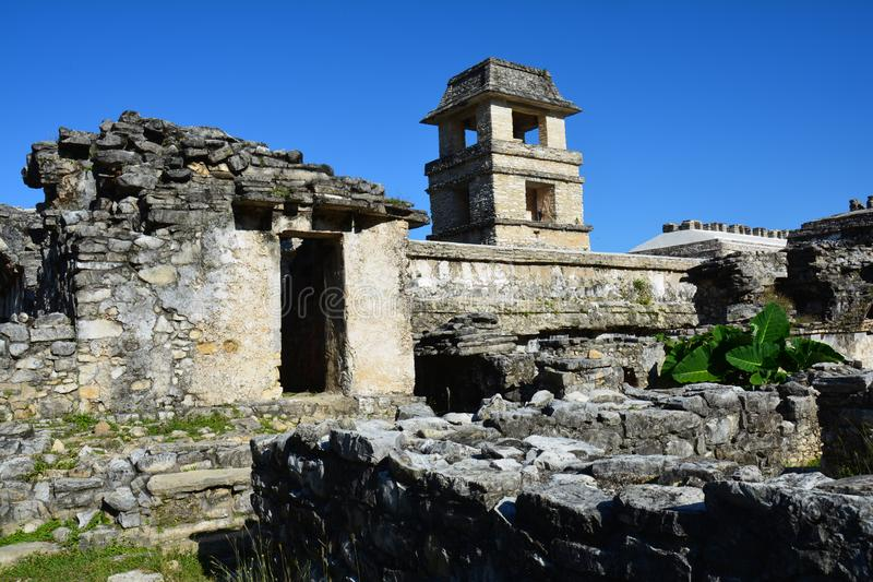 La vue Palenque ruine Chiapas Mexique photos libres de droits