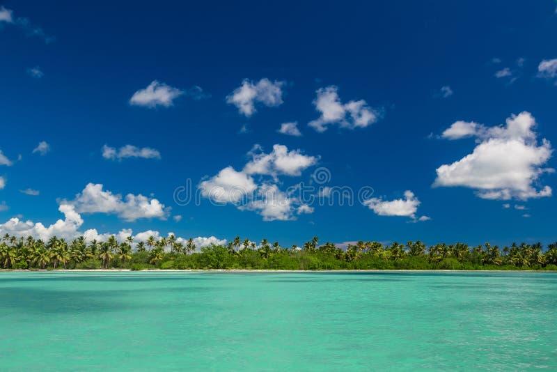 La vue panoramique des palmiers exotiques et la lagune sur l'île tropicale échouent photo libre de droits
