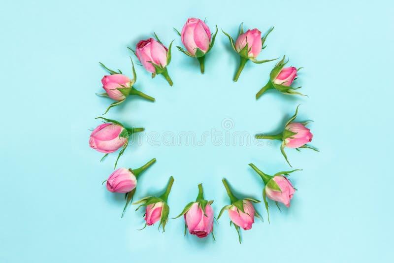 La vue supérieure des roses roses a arrangé en cercle au-dessus de fond bleu Abrégez le fond floral photo stock