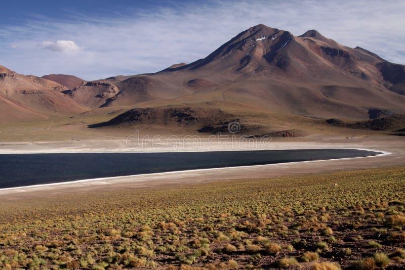 La vue sur le lac bleu profond à la lagune Miscanti d'Altiplanic Laguna dans le désert d'Atacama avec en partie la neige a couver photo libre de droits