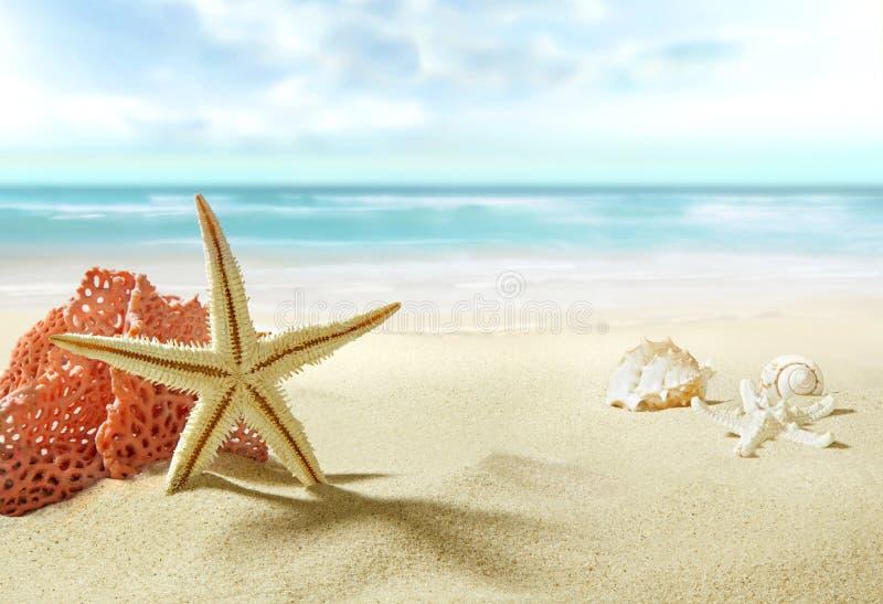 La vue sur la plage sablonneuse image stock