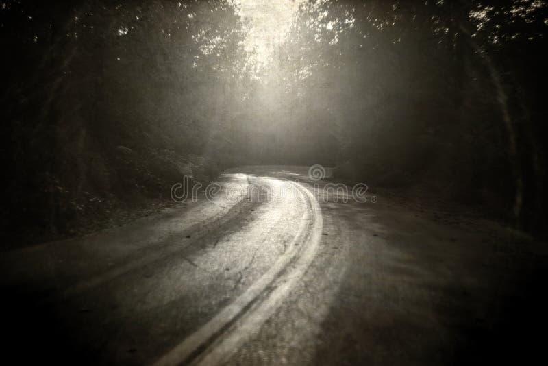 La vuelta en el bosque, viejo estilo del camino del vintage resistió a la impresión Textu imagen de archivo libre de regalías
