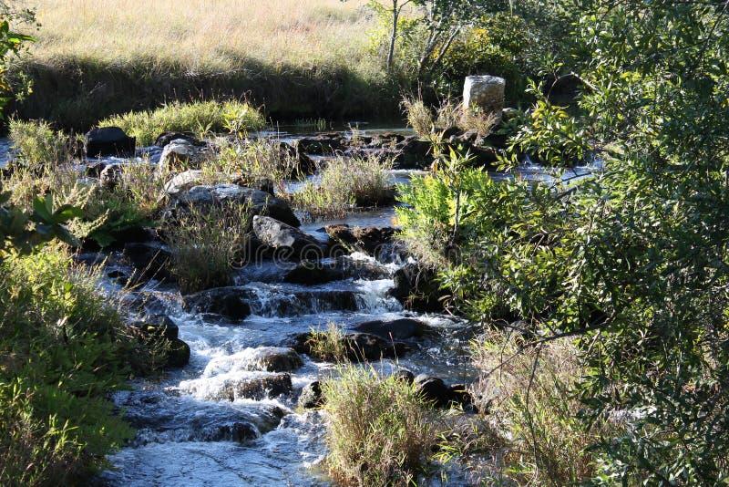 La Zambie de rivière de Kaombe photos stock