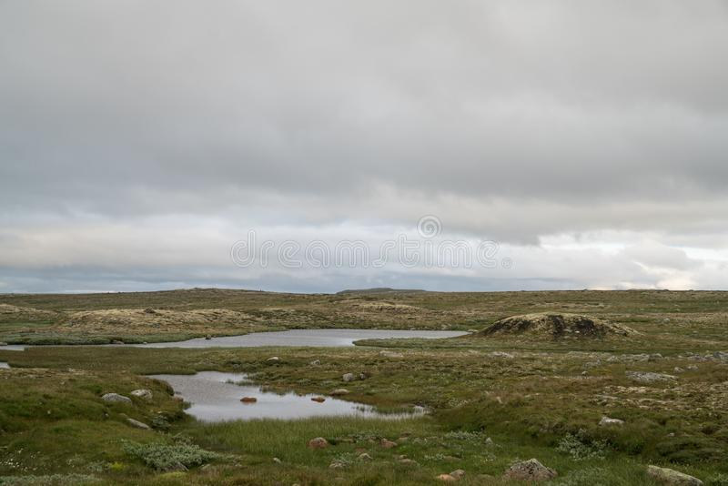 La zona di montagna di Hardangervidda fotografia stock libera da diritti