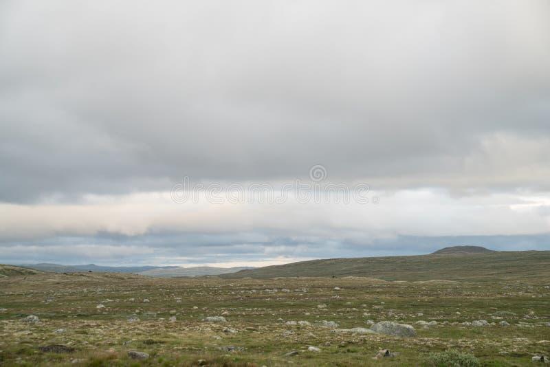La zona di montagna di Hardangervidda immagini stock