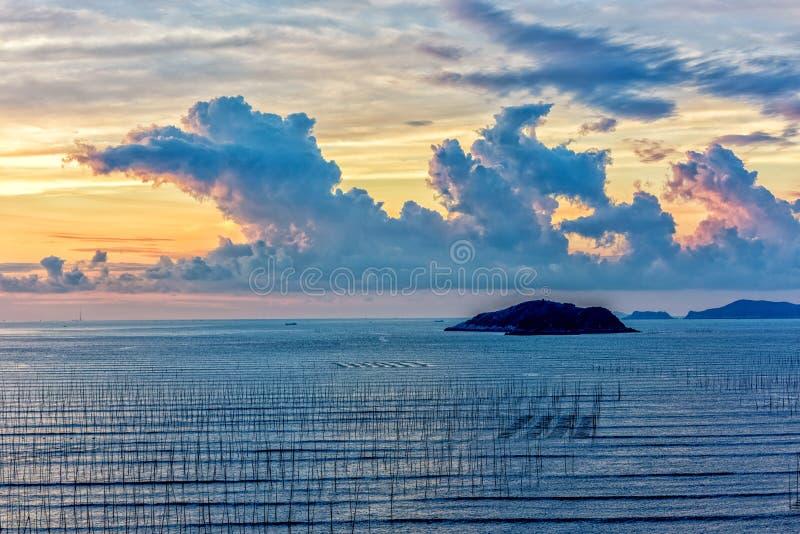 La zone intertidale côtière photo libre de droits