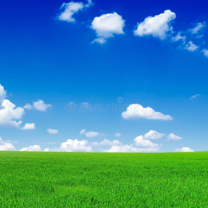 La zone verte image libre de droits