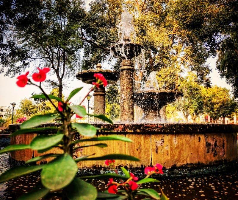 LAAL BAGH庭院拉贾斯坦 库存图片