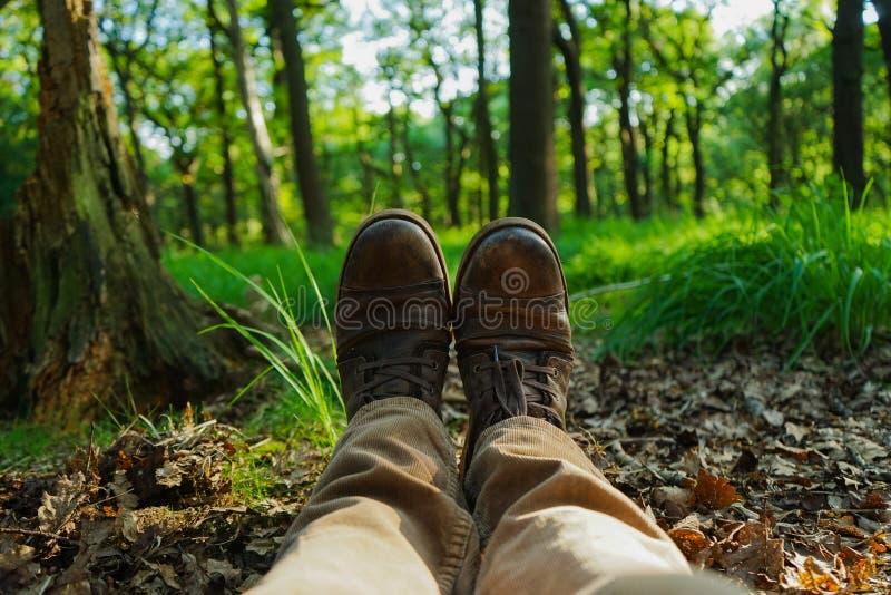 Laarzen in het hout royalty-vrije stock afbeelding