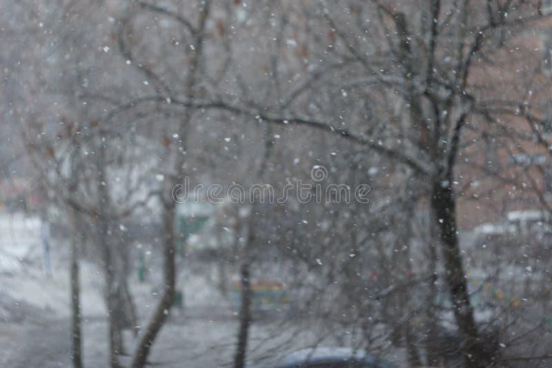 Laatste sneeuwval stock afbeelding