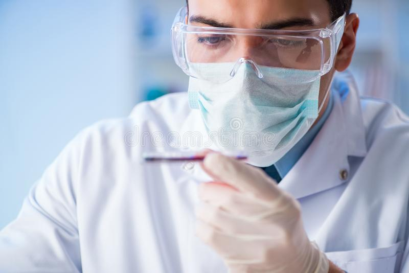 The lab assistant testing blood samples in hospital. Lab assistant testing blood samples in hospital stock photography
