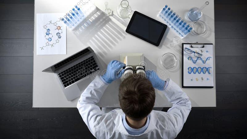 Lab asystent przystosowywa mikroskopu cel, bada materiał, odgórny widok zdjęcie stock