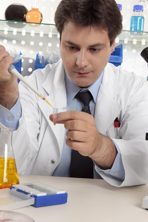 lab pipety naukowa używać fotografia royalty free