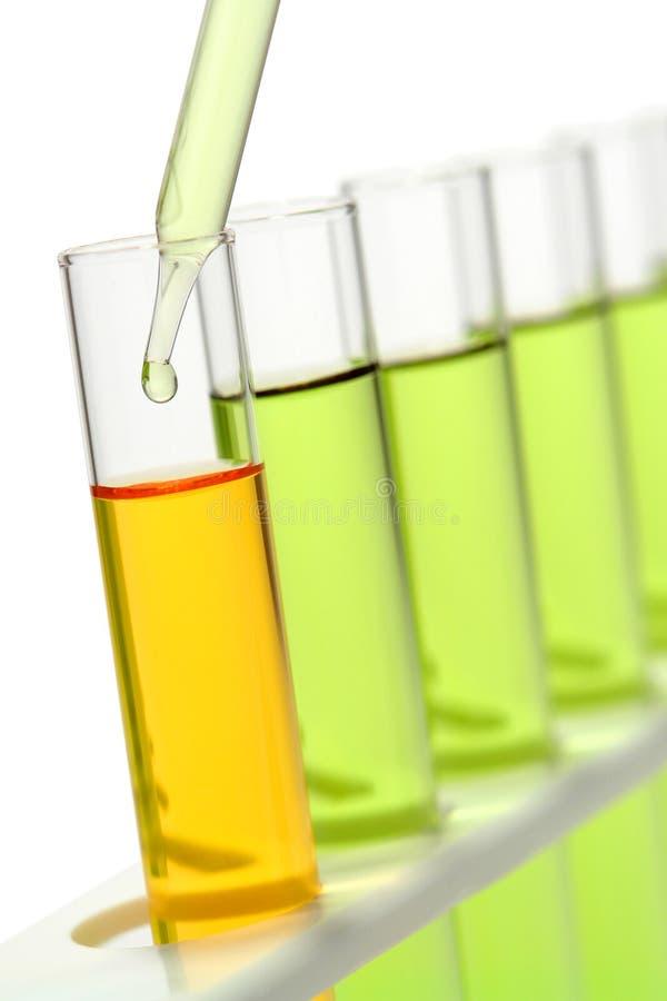 lab research science test tubes arkivbild