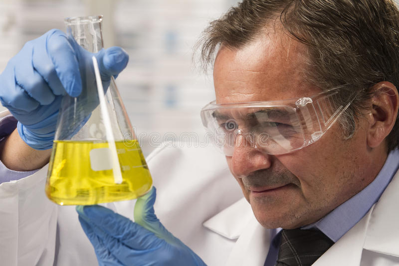 Lab scientist examining beaker, horizontal. Lab scientist holding up a beaker and looking at it closely royalty free stock photography