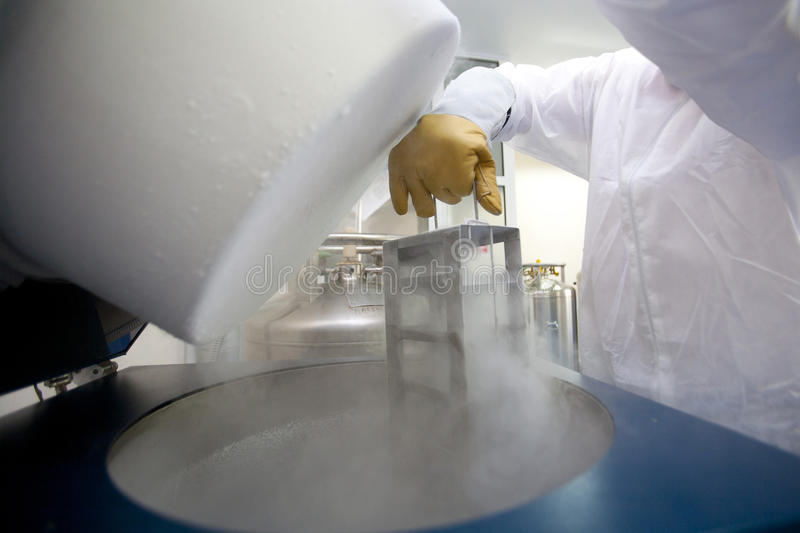 Lab technician with liquid nitrogen container stock images