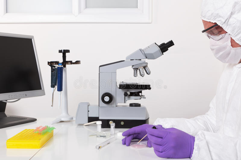 Lab Technician Taking A Sample Royalty Free Stock Photography