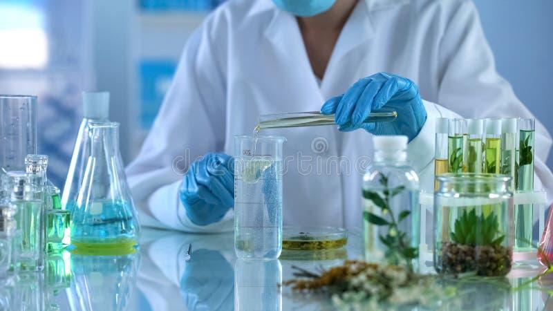 Lab technika dolewania olej w próbnym cieczu, kosmetyk produkcja, aromatherapy zdjęcie royalty free