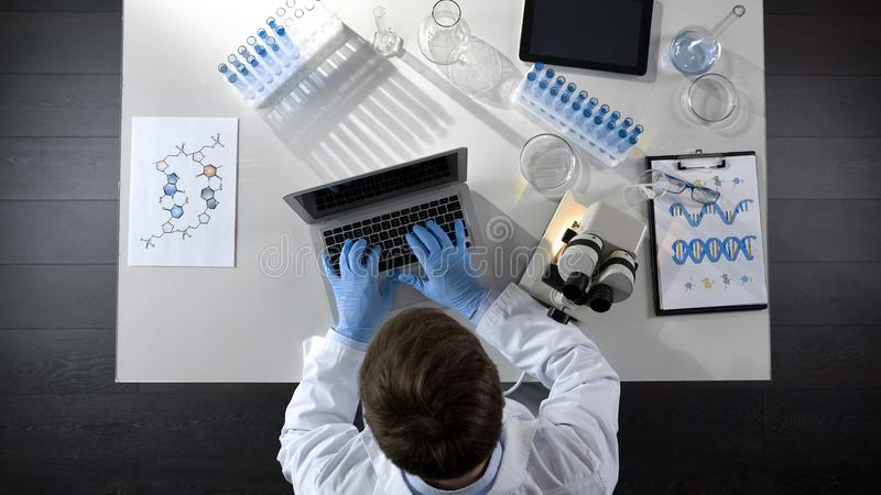 Lab worker viewing samples under microscope and typing results on laptop topview stock images
