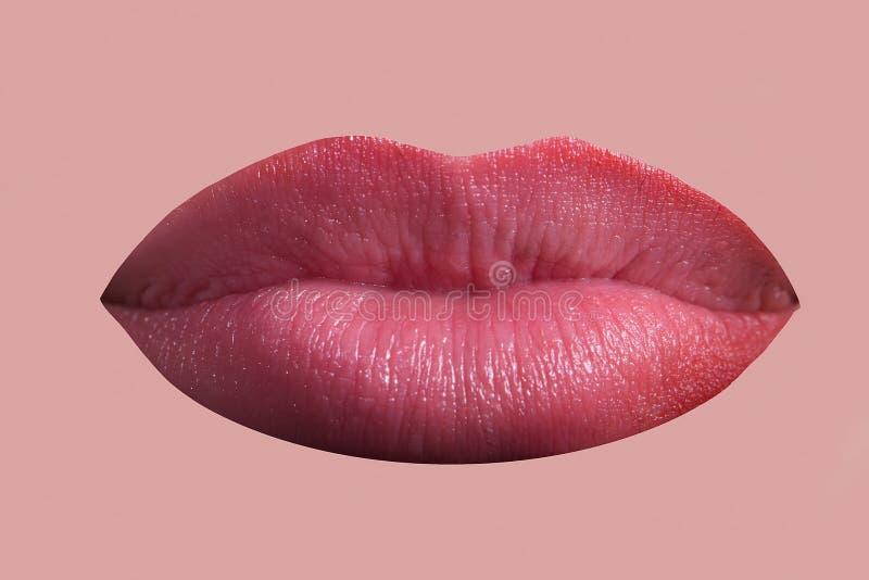 Labbra della femmina di fascino immagini stock