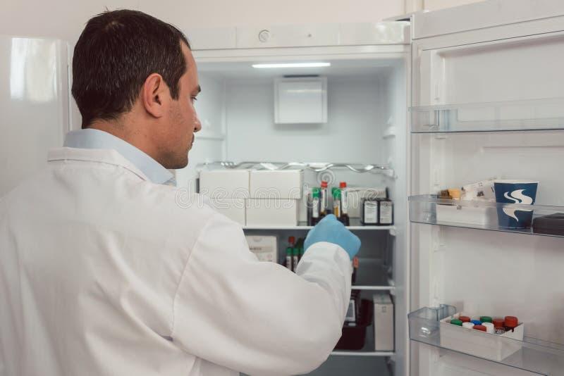 Labbtekniker som lagrar blodprövkopior i kyl royaltyfri bild