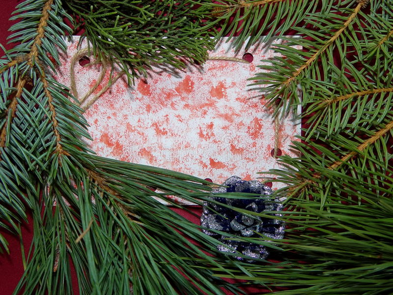 Label with branches of spruce stock photo