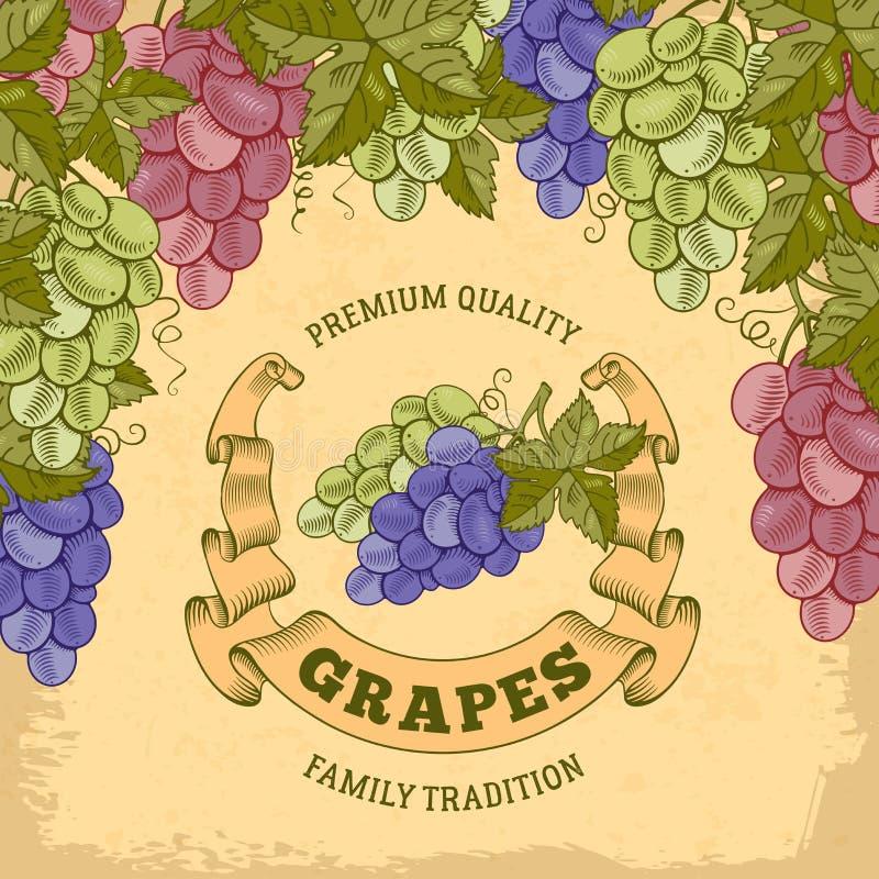 Label de raisins illustration stock