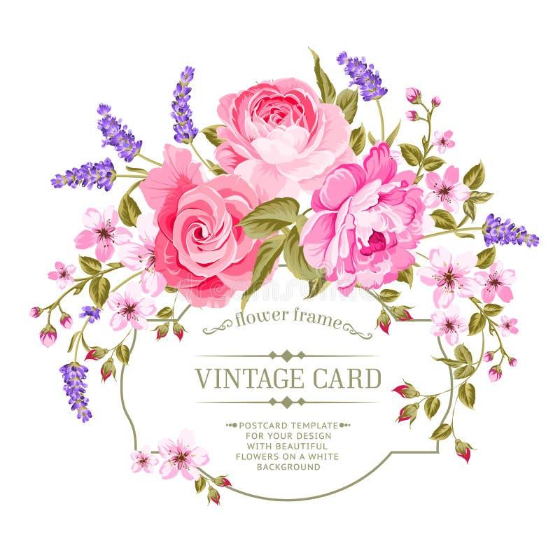 Label rose de vintage de pivoine illustration libre de droits
