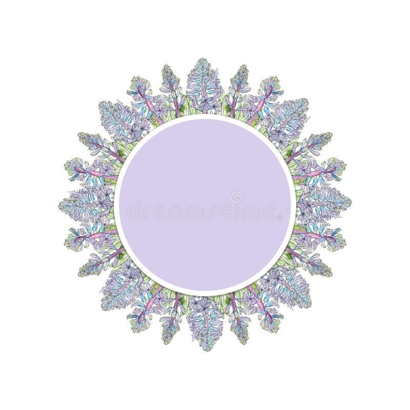 Label violet avec les fleurs bleues de jacinthe photo libre de droits