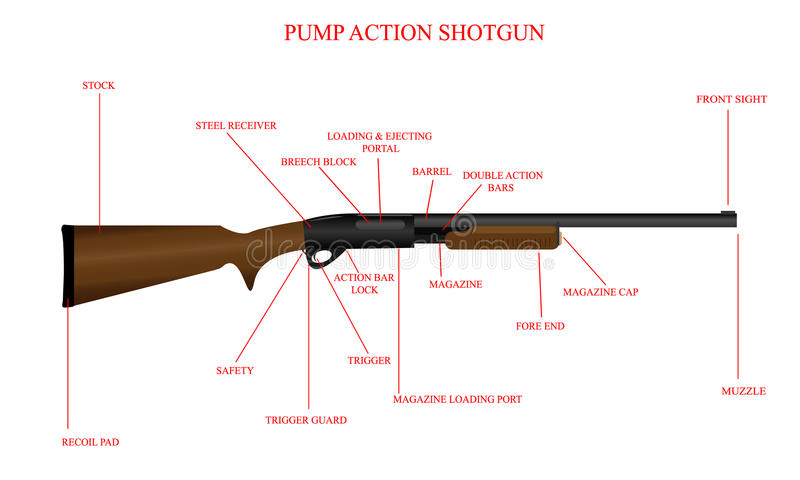 auto parts unlimited with Stock Image Labeled Shotgun Diagram Illustration Pump Action Image33392141 on Parts Bin Tuff Country 2 Inch Ez Ride Lift Kit Jeep Wrangler Jl further Stock Images Blueprint Race Car Image27257574 moreover Ba77 Bl besides 60 50355 N in addition New 2017 Jeep Wrangler Unlimited Rubicon Recon 4wd Convertible 1c4hjwfg3hl703335.