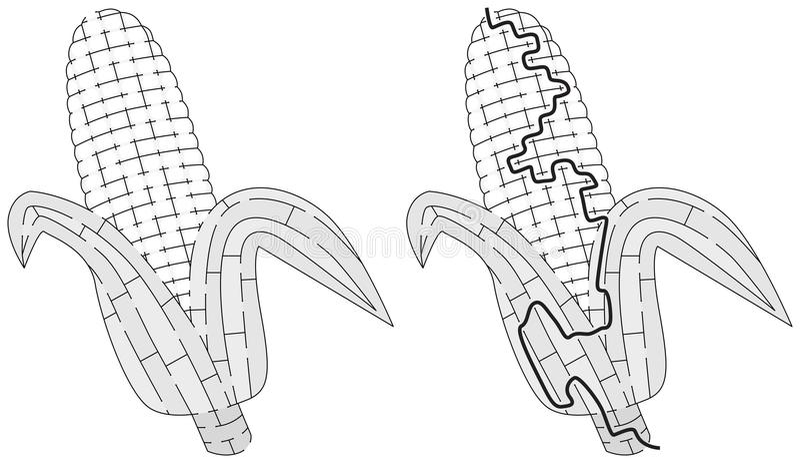 Laberinto del maíz libre illustration