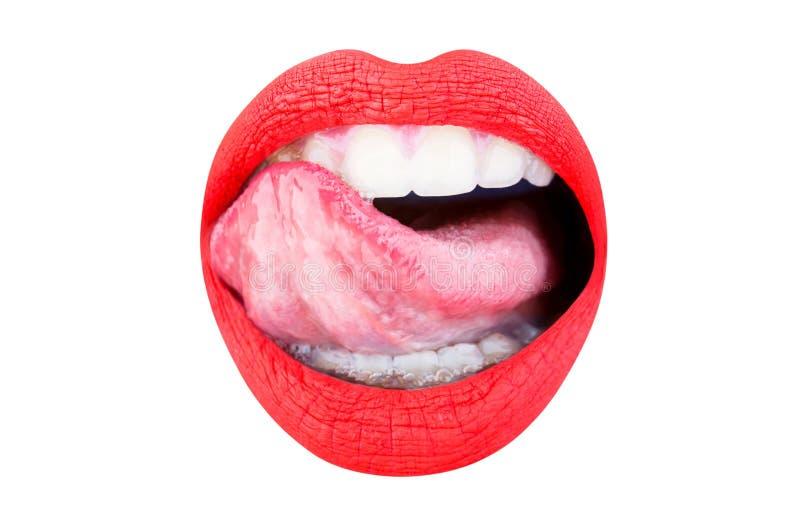 Labio, barra de labios roja y lipgloss, apasionados Cerca para arriba, macro con la boca hermosa Leng?eta atractiva Lengua y boca fotografía de archivo libre de regalías