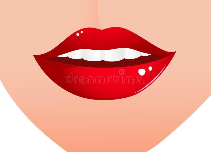 Labios atractivos de la mujer stock de ilustración