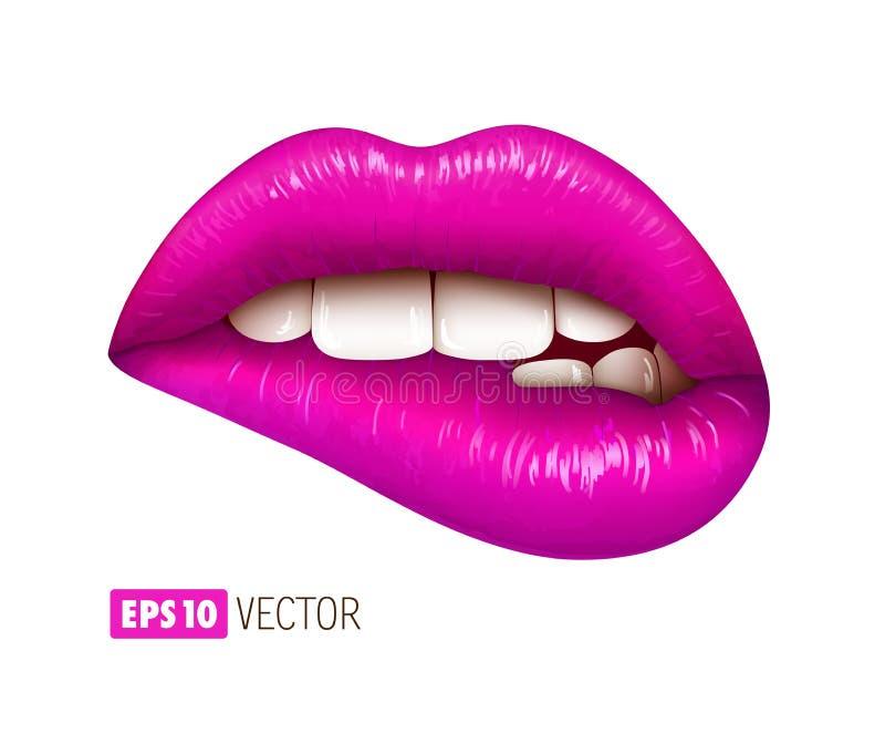 Labios atractivos púrpuras aislados en blanco Ilustraci?n realista 3d ilustración del vector