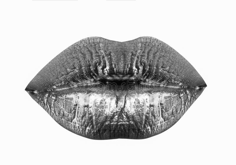 Labios de la mujer Aumento de los labios Tratamiento de la belleza Inyecci?n del llenador Labios aislados en el fondo blanco Boca fotografía de archivo