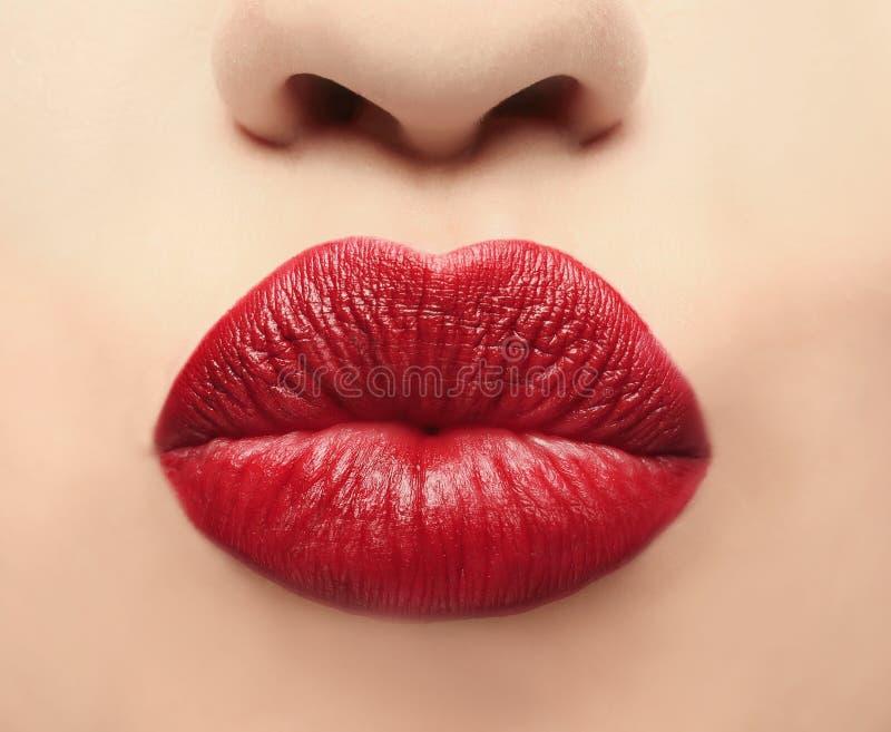 Labios de la mujer joven hermosa que aplica maquillaje fotos de archivo