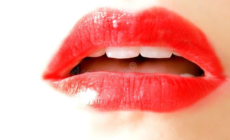 Labios del rojo de la mujer imagen de archivo libre de regalías