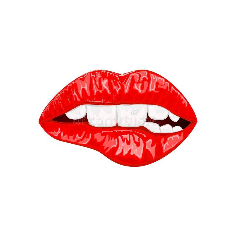 Labios femeninos rojos stock de ilustración