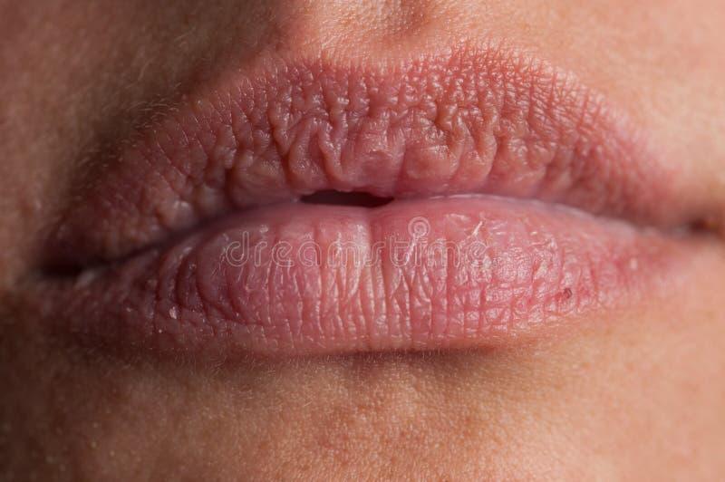Labios naturales hermosos de una mujer adulta foto de archivo libre de regalías