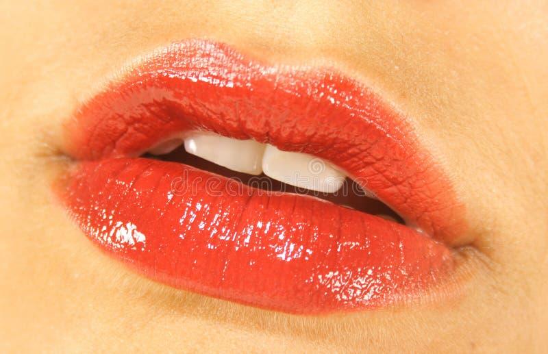 Labios rojos jugosos foto de archivo libre de regalías