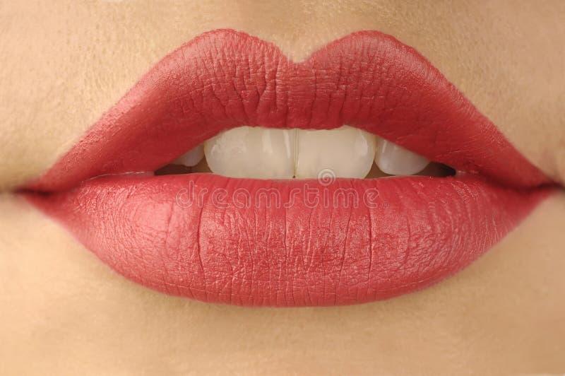 Labios rojos y teech blanco foto de archivo